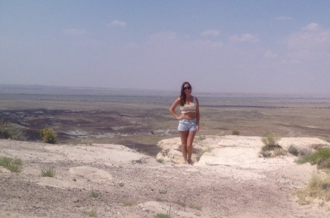 Petrified Forest National Park