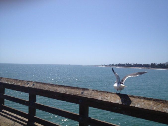 Ventura Pier is the longest pier in California