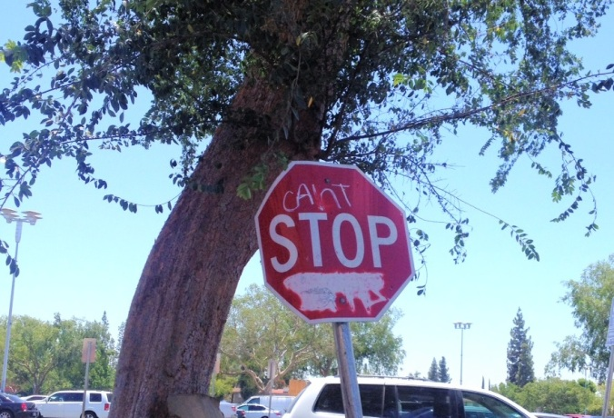 The only good thing to come out of Bakersfield, California was this stop sign and a decent UPS store.