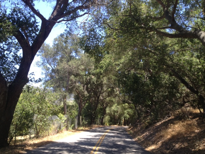 Driving the backroads of Carpinteria, California