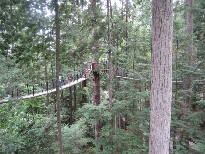 The Treetop experience, on the other end of the Capilano Suspension Bridge